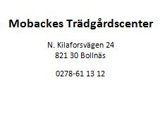 mobackes2
